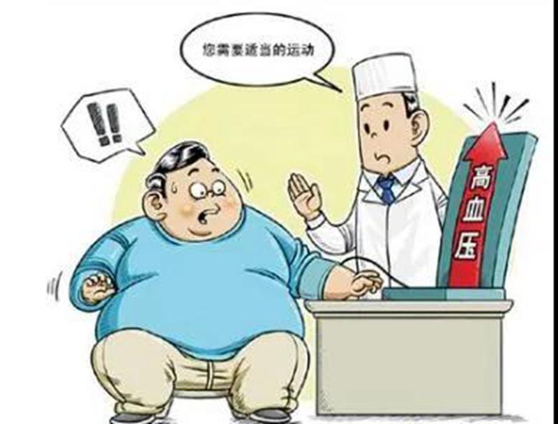 【肥胖与高血压】心血管内科专家张泉:肥胖已成为高血压患病率快速增长的主要原因之一