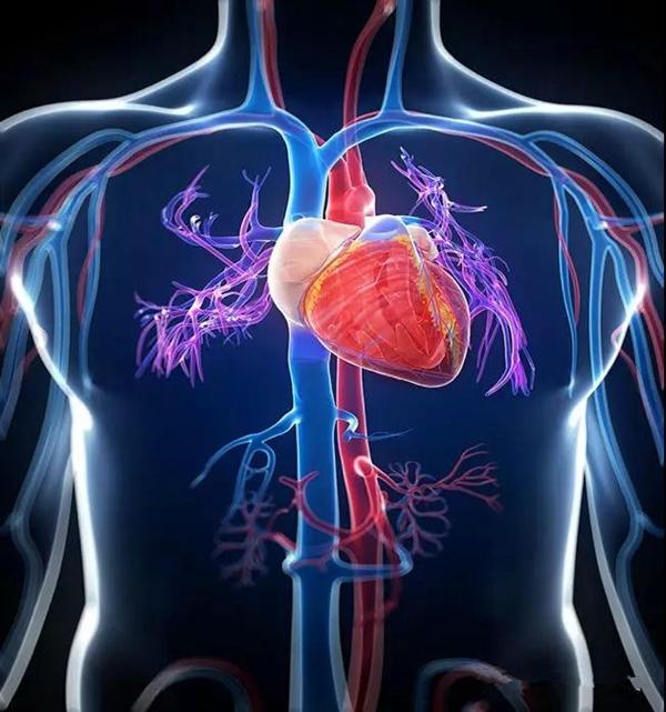【健康传播】生死竞速——急性心肌梗死发作如何自救?